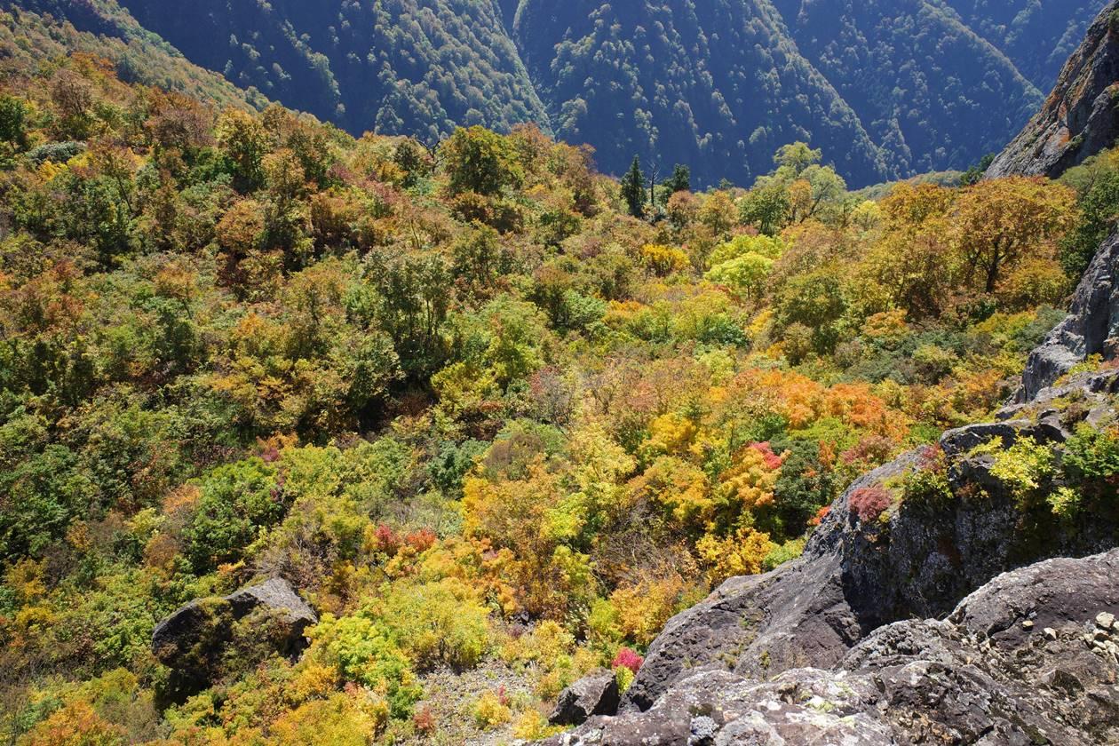 【新潟】金城山 断崖絶壁の紅葉