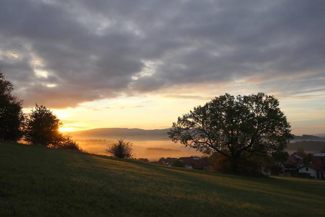 Sunrise in the Bavarian Forest IMG_7004