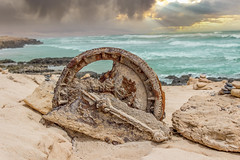 Wheel at Beach
