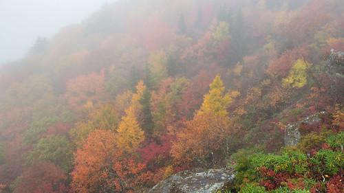 north carolina northcarolina boone blowingrock roughridge rough ridge fog fall autumn autumnal colors blue blueridgeparkway blueridge parkway nps nikon nikond850 d850 subdued sirui siruitripods