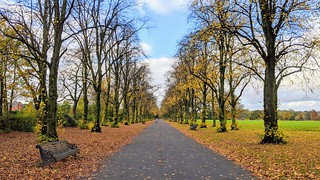 Haslam Park Autumn | by Tony Worrall