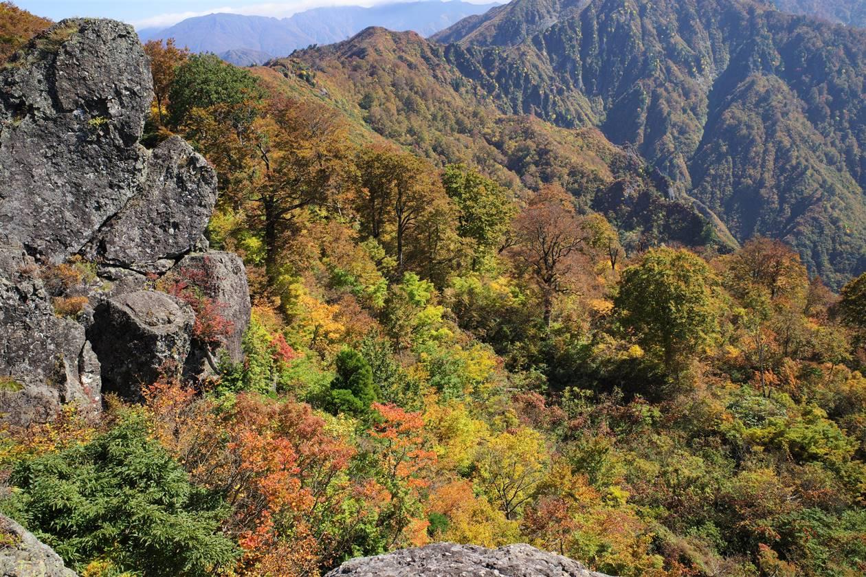 【新潟】金城山登山 紅葉風景