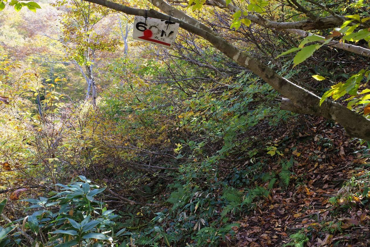 金城山・観音山コースの水場分岐