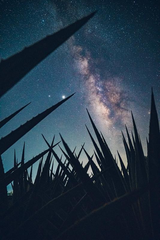 Milkyway 銀河 台灣 Taiwan