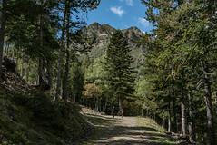 Tavascan, Pirineos