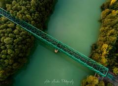 puente de la vida