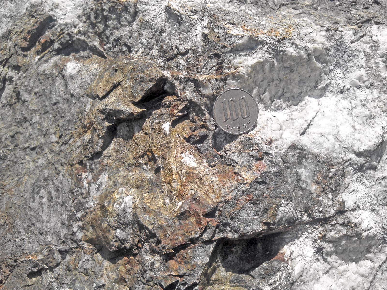 カリフェロ定永閃石 / Potassic-ferro-sadanagaite
