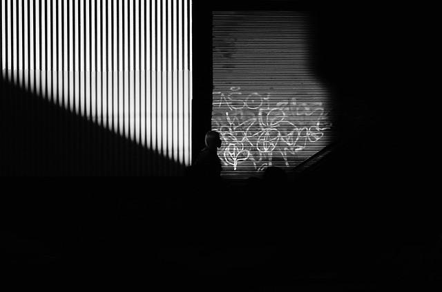 Entre Lineas y Sombras