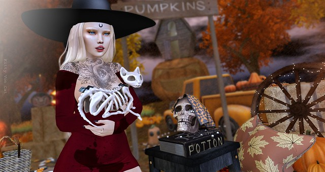 Look 1431 - On the Pumpkin Patch