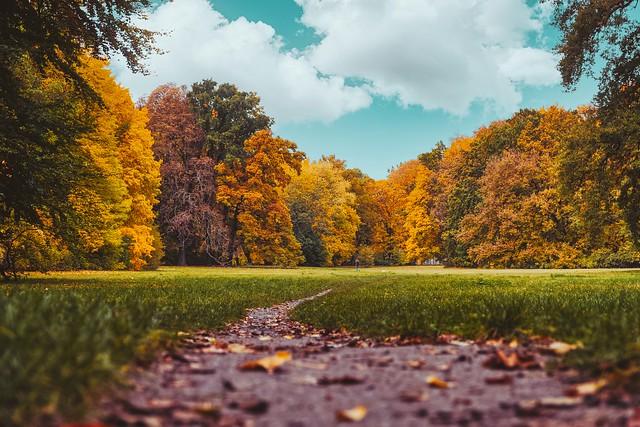 Aber Herbst ist auch ganz schön