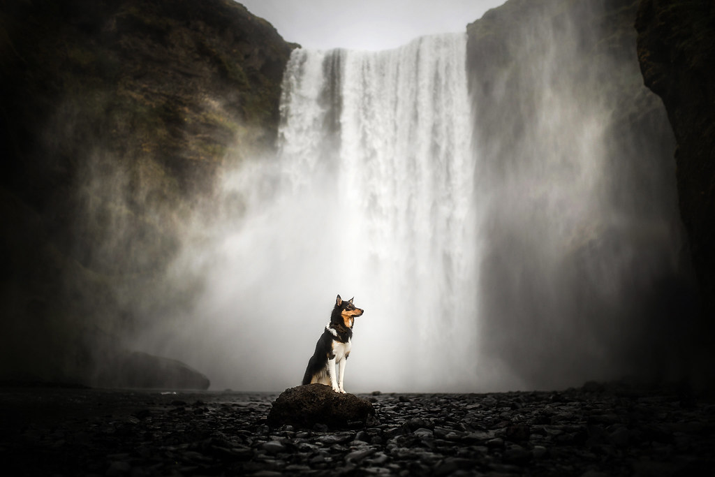 By The Skogafoss