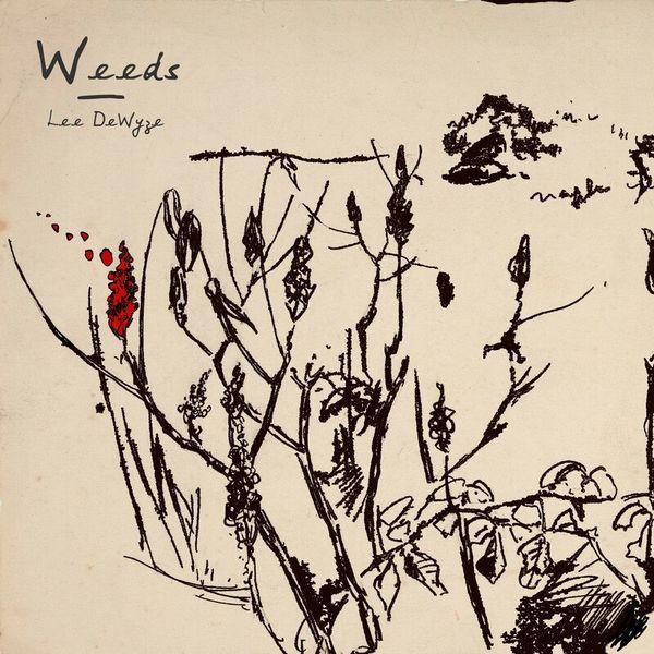Lee DeWyze - Weeds