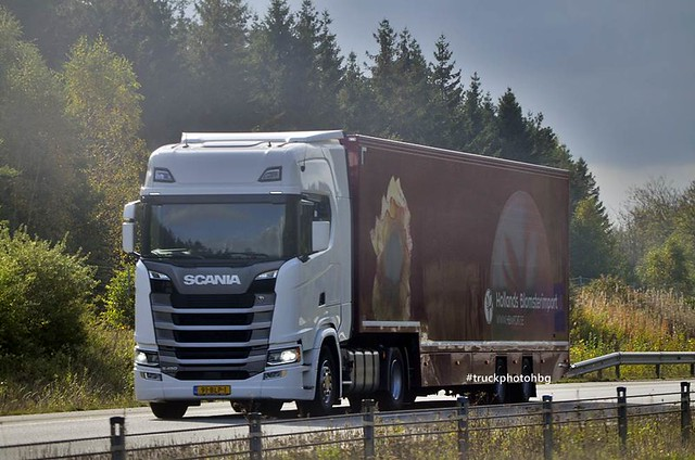 Hollands Blomsterimport - Scania S NG