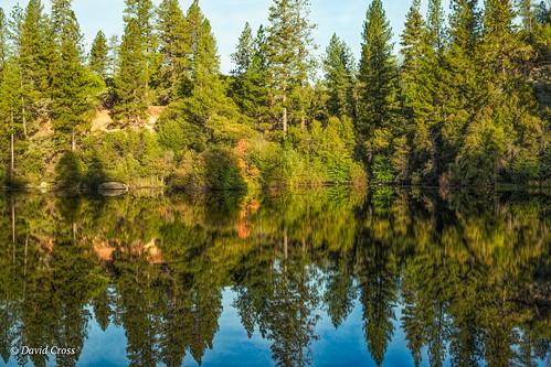 california landscape nevadacity sierranevadafoothills hirschmantrail canonef24105mmf4lisusm reflections canon5dmarkiii topazstudio waterreflections hirschmanpond nevadacounty lightroom6