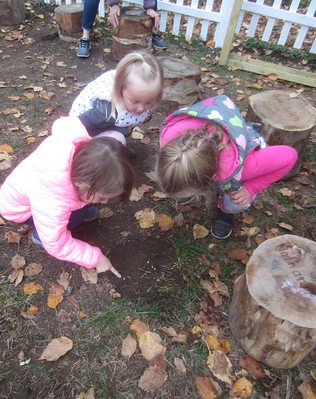 finding worms and grubs