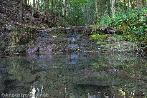 Reflections in a pool in Naval Run, Tiadaghton State Forest, Pennsylvania