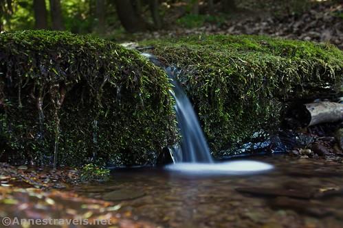 Little waterfall near the Naval Run Campsites, Tiadaghton State Forest, Pennsylvania
