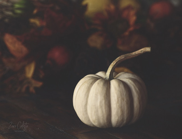 Oh my Gourdness, it's already the end of October!
