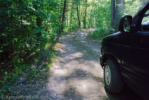 The driveway into our primitive campsite in Tiadaghton State Forest, Pennsylvania