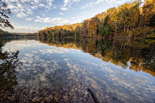 Rose Lake October 23 2020