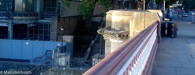 Bridge & Steps