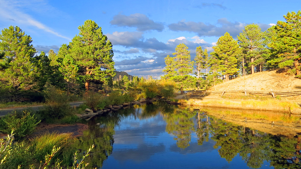 Pond Reflection At Sunset