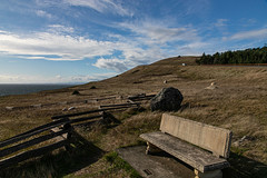 Cattle Point - San Juan Island