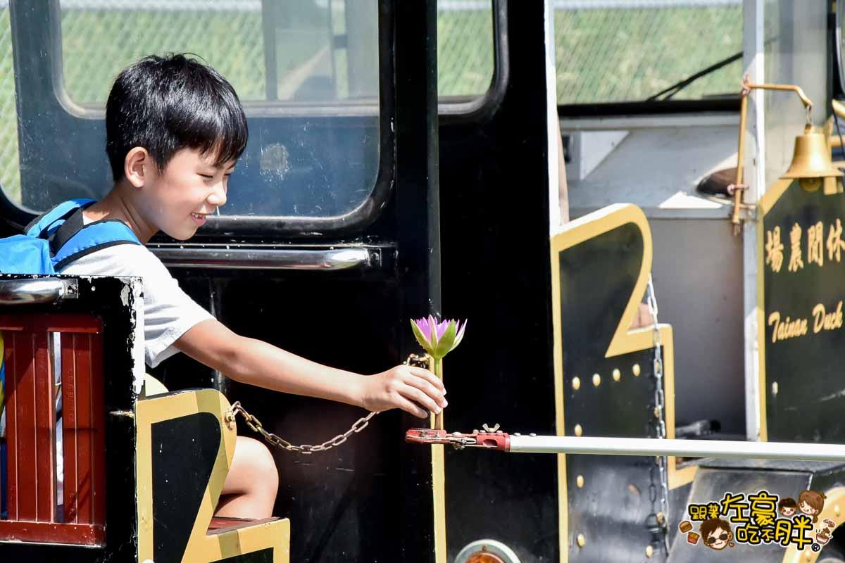 台南鴨莊 田媽媽 台南親子旅遊景點-136
