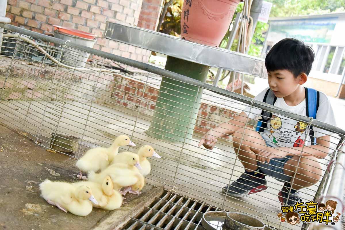 台南鴨莊 田媽媽 台南親子旅遊景點-96