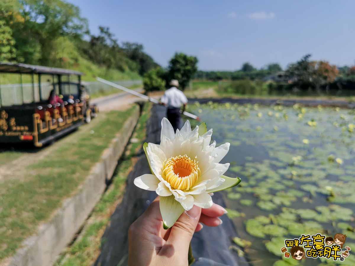 台南鴨莊 田媽媽 台南親子旅遊景點-133