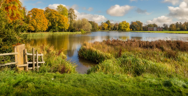 Avington Park in Autumn