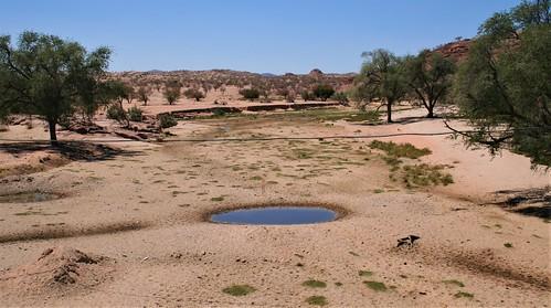 Namibia:  water in the dry Ugab river at Klein Aub, Damaraland