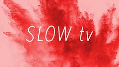 slowTV on Pluto TV