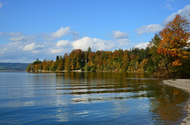 Kochel - Kochelsee with Fall Colors