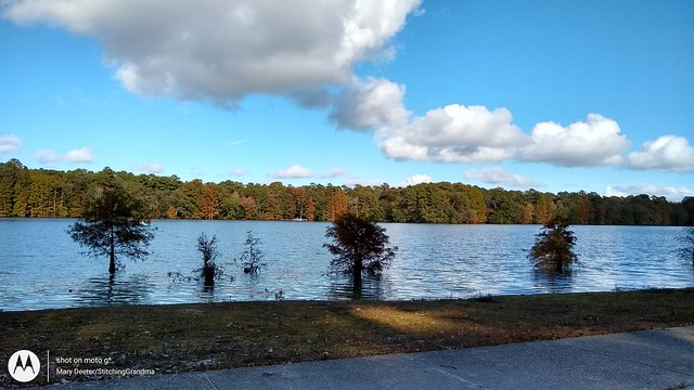 fall view at the pond