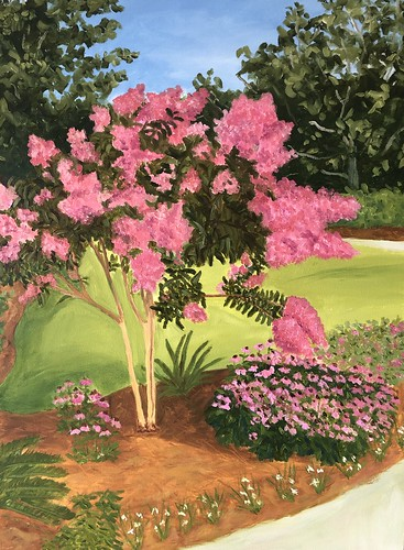 Crepe Myrtle and Cone Flowers 24