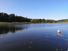 Prästfjärden i somras, Åkersberga.