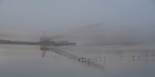 Traffic on a Foggy Ohio River passing Newport, Kentucky