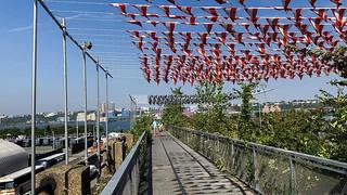 Garlands over the High Line in New York City, an art installation by David Buren
