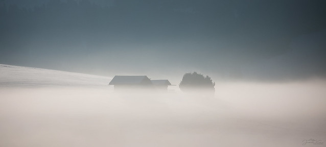 swallowed by fog