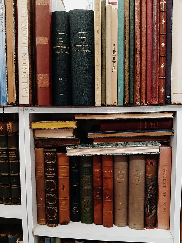 Libros en librería Evasions