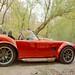 Shelby Cobra Details