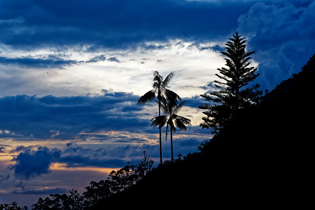Sunset at Cocora Valley