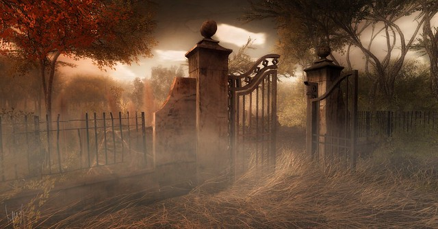 Morning Dust Graveyard
