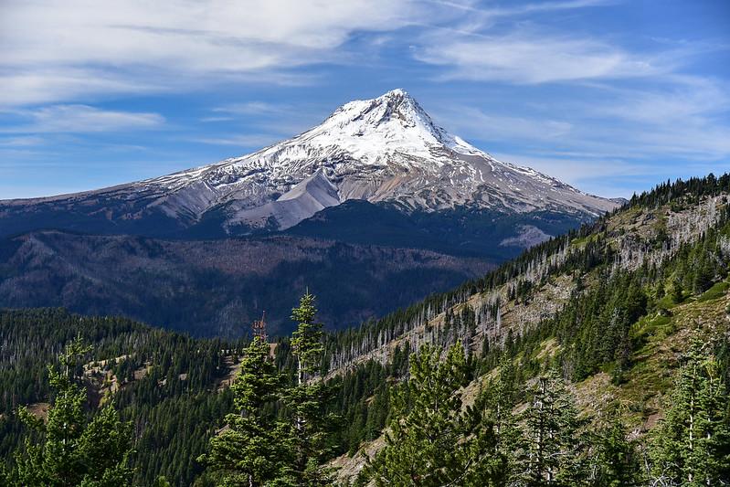 Mt. Hood view