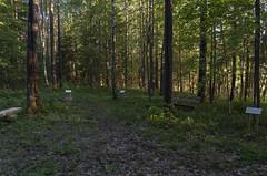 Stompaku purva nacionālo partizānu nometnes vieta, 30.05.2019.
