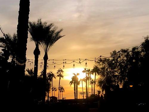 smileonsaturday herecomesthesun thebeatles arizonasunrise scottsdale palm palmtrees lookingeast morning morninghasbroken songtitle sunrise