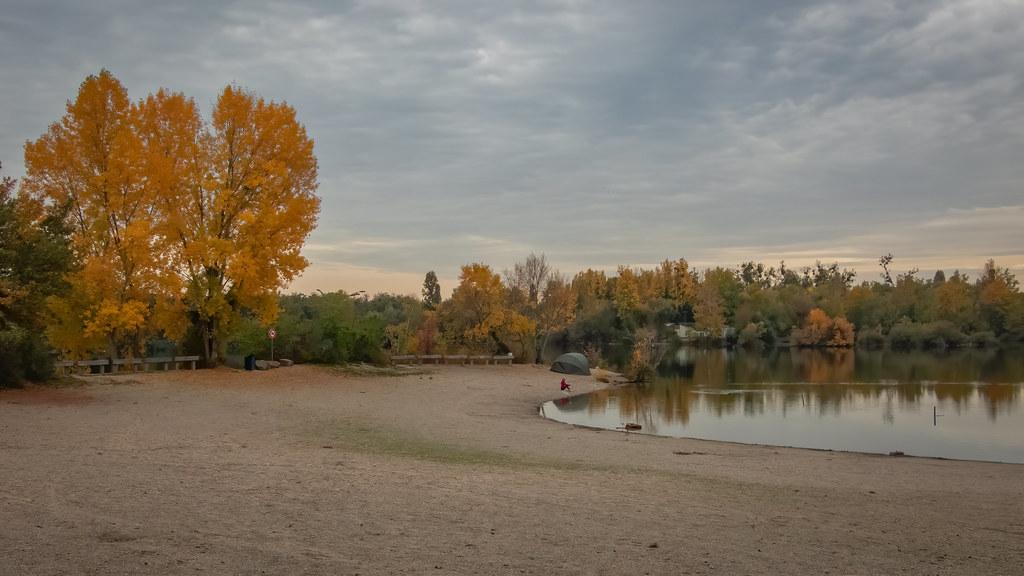 Au bord de l'étang... + nouveau cadrage... 50524356057_ce444e4874_b