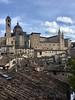 Urbino-1927