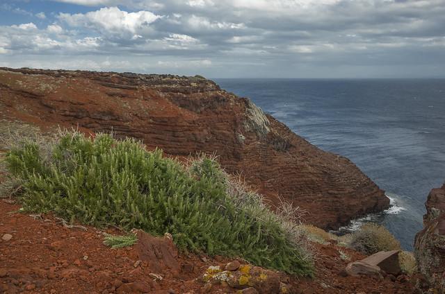 Cala Rossa, Isola di Capraia